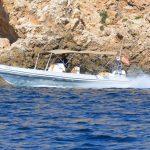 Picton Cobra rib for rental in Palma