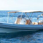 Great day boat rental on the Picton Cobra rib in Palma