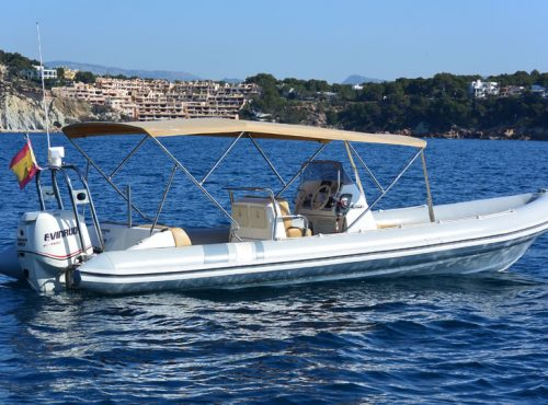 Rib rental in Mallorca – Picton Cobra 8m