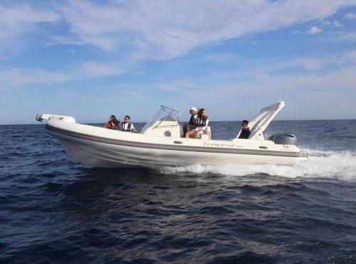 Rib charter in Ibiza – Capelli Tempest 850