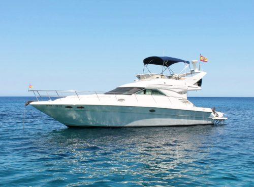 Boat Charter in Port Andratx – Sea Ray 400 Fly